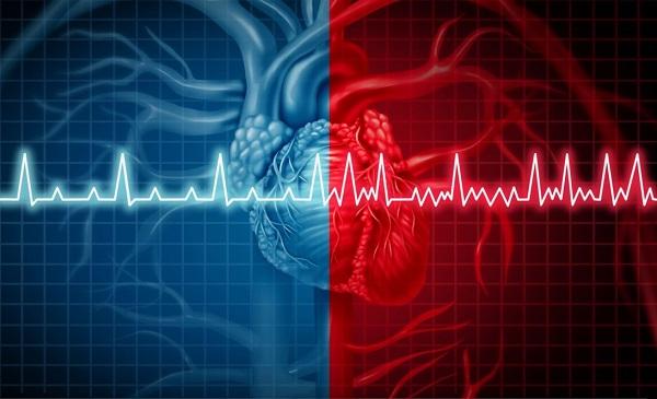 ضربان قلب از چند به بالا خطرناک است؟